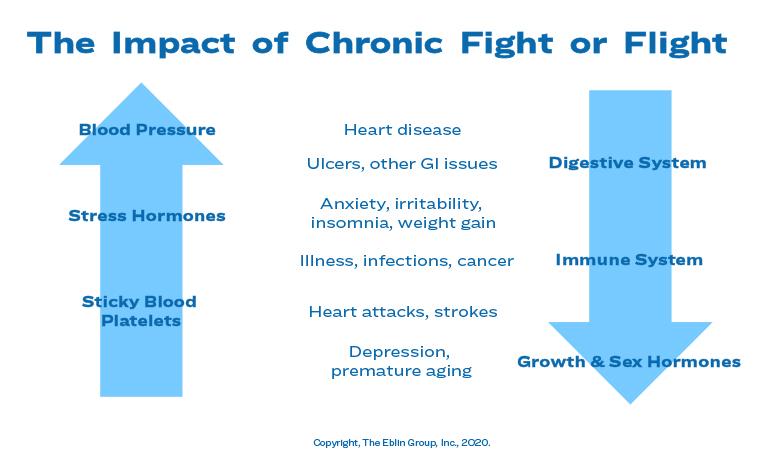chronic flight or fight